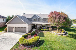 Photo of 22632 Parkview Lane, Frankfort, IL 60423 (MLS # 10937888)