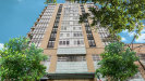 Photo of 212 E Cullerton Street, Unit Number 708, Chicago, IL 60616 (MLS # 10938007)