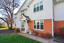 Photo of 886 Nelli Court, Unit Number 101, Naperville, IL 60563 (MLS # 10941917)