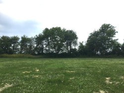 Photo of Lot 4A&B Cassidy Court, UTICA, IL 61373 (MLS # 09164417)