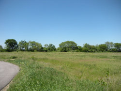 Photo of Lot 2 West Avenue, MAZON, IL 60444 (MLS # 09689644)