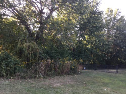 Photo of Lot 5 Armstrong Street, SENECA, IL 61360 (MLS # 09748813)