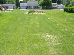 Photo of LOT 7 E North Street, SOMONAUK, IL 60552 (MLS # 09845972)
