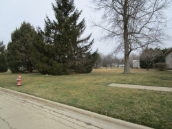Photo of 520 E Dekalb Street, SOMONAUK, IL 60552 (MLS # 09897629)