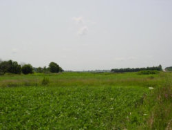 Photo of 27 Acre State Route 71, YORKVILLE, IL 60560 (MLS # 10026762)