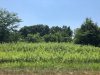 Photo of Lot 2 N 675th Avenue, HENNEPIN, IL 61327 (MLS # 10126147)