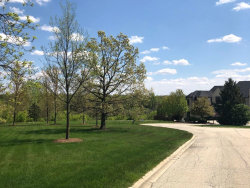 Photo of Lot 10 Plattner Court, MOKENA, IL 60448 (MLS # 10292338)