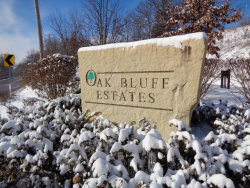 Photo of LOT 30 Pin Oak Court, LEMONT, IL 60439 (MLS # 10311376)