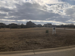Photo of Lot 90 Switchgrass Lane, ST. CHARLES, IL 60175 (MLS # 10316920)