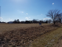 Photo of W Kennedy Road, PEOTONE, IL 60468 (MLS # 10317172)