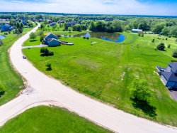 Photo of 50 Fields Drive, YORKVILLE, IL 60560 (MLS # 10328055)