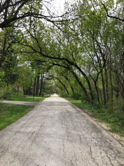 Photo of Lot 3 Cedar Lane, WAYNE, IL 60184 (MLS # 10371695)