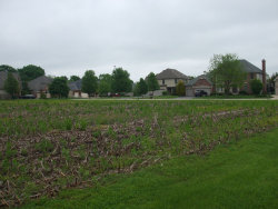 Photo of LOT 88 W Blue Lake Circle, ST. CHARLES, IL 60175 (MLS # 10395714)