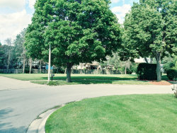 Photo of Lot 8 Grays Court, OSWEGO, IL 60543 (MLS # 10487684)