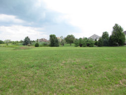 Photo of Lot 49 Audrey Avenue, YORKVILLE, IL 60560 (MLS # 10511093)