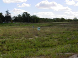 Photo of Lot 17 Savanna Court, Yorkville, IL 60560 (MLS # 10534759)