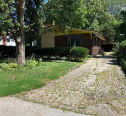 Photo of 919 S Quincy Street, Hinsdale, IL 60521 (MLS # 10544682)