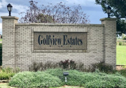 Photo of Lot 12 W Golfview Drive, Frankfort, IL 60423 (MLS # 10592210)