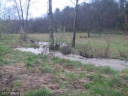 Photo of 521 Cattail Rd, Lot 42h, Winchester, VA 22603 (MLS # FV10009031)