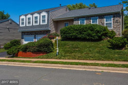 Photo of 5520 BUGGY WHIP DR, Centreville, VA 20120 (MLS # FX9986129)