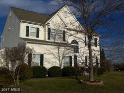 Photo of 20788 LAPLUME PL, Ashburn, VA 20147 (MLS # LO10012362)