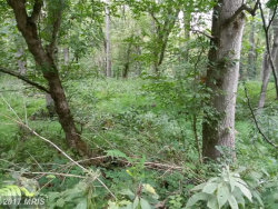 Tiny photo for River Rd, Lot 16, Sharpsburg, MD 21782 (MLS # WA10017485)