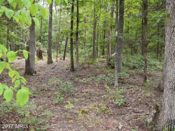 Photo of 14 Reliance Woods Dr, Lot 14, Middletown, VA 22645 (MLS # WR10030357)
