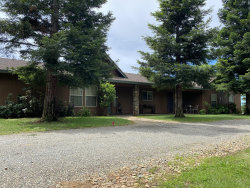 Photo of 21203 River Bluff Dr, Anderson, CA 96007 (MLS # 20-4038)