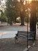 Photo of 22152 Bloomingdale Rd, Palo Cedro, CA 96073 (MLS # 20-4759)