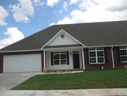 Photo of 71 S Heritage Dr, Chickamauga, GA 30707 (MLS # 1267219)