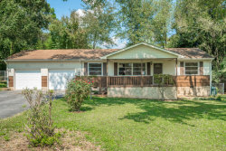 Photo of 115 Williams Ave, Flintstone, GA 30725 (MLS # 1270543)