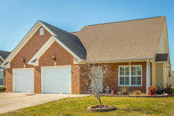 Photo of 259 Briarstone Dr, Rossville, GA 30741 (MLS # 1276523)