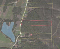 Photo of 0 Wildlife Lake Rd, Summerville, GA 30747 (MLS # 1255683)