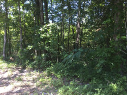 Photo of 0 Old Lafayette Rd, Rock Spring, GA 30739 (MLS # 1266247)