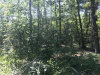 Photo of 0 Forestry Tr, Summerville, GA 30747 (MLS # 1271256)