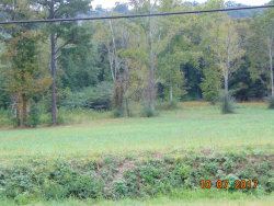 Photo of 0000 Chattanooga Valley Rd, Flintstone, GA 30725 (MLS # 1271445)