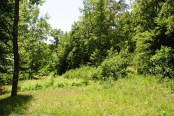 Photo of 2175 N Cedar, Flintstone, GA 30725 (MLS # 1271991)