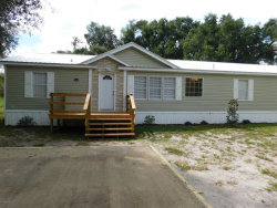 Photo of 1005 Shell ST, WELAKA, FL 32193 (MLS # 1015429)
