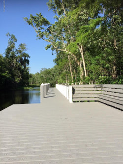 Tiny photo for 3126 Tuesdays COVE, GREEN COVE SPRINGS, FL 32043 (MLS # 1046607)