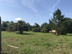 Photo of 270 Georgetown Shortcut RD, CRESCENT CITY, FL 32112 (MLS # 827425)