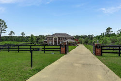 Photo of 243 Towers Ranch DR, ST AUGUSTINE, FL 32092 (MLS # 905033)