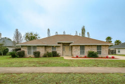 Photo of 3156 Peppertree DR, MIDDLEBURG, FL 32068 (MLS # 912574)