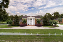 Photo of 6057 County Rd 219, MELROSE, FL 32666 (MLS # 921109)
