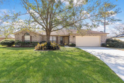 Photo of 14332 Nature Bridge LN, JACKSONVILLE, FL 32224 (MLS # 921358)