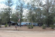 Photo of 2966 Guava CT, MIDDLEBURG, FL 32068 (MLS # 921680)
