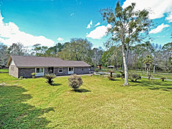 Photo of 2320 S Dolphin AVE, MIDDLEBURG, FL 32068 (MLS # 926029)