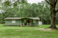 Photo of 392 Old Jennings RD, MIDDLEBURG, FL 32068 (MLS # 954404)