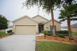 Photo of 16362 Bamboo Bluff CT, JACKSONVILLE, FL 32218 (MLS # 967570)