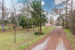 Photo of 4142 Scenic DR, MIDDLEBURG, FL 32068 (MLS # 975508)