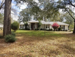 Photo of 3363 County Road 215, MIDDLEBURG, FL 32068 (MLS # 980892)